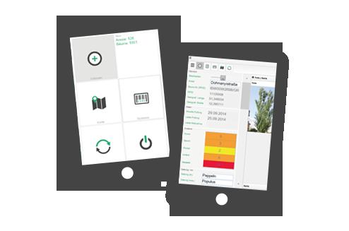 VItree - die App zur Erfassung und Verwaltung eines elektronischen Baumkatasters